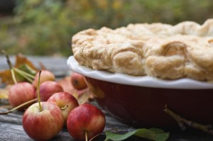 best apple pie in sonoma county